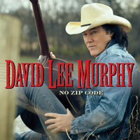 Album Everything's Gonna Be Alright - David Lee Murphy & Kenny Chesney