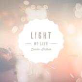 Light Bridges
