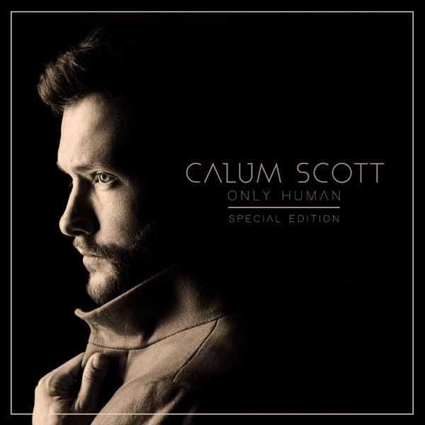 You Are the Reason - Calum Scott & Leona Lewis song image