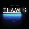 Thames - How I Want Ya (feat. Dev) artwork