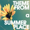 Theme From a Summer Place - Single