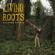 Nomadic Rhythms (feat. Khusugtun Batzorig) - Living Roots