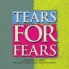 Head over Heels (Talamanca System Tribal Persuasion Remix) - Single, Tears for Fears