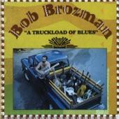 Bob Brozman - Get Your Ashes Hauled