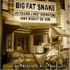 Big Fat Snake - Bonsoir Madame artwork