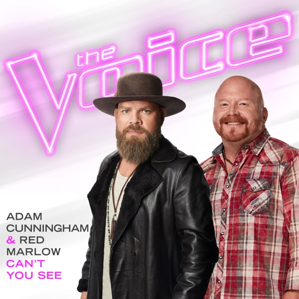 Can't You See (The Voice Performance) - Single