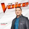 Amazed The Voice Performance - Kaleb Lee mp3