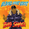 Big Shaq - Man's Not Hot artwork