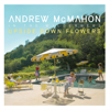 Andrew McMahon In the Wilderness - Upside Down Flowers  artwork