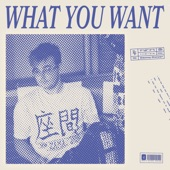 Danny Dwyer - What You Want