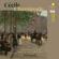 Trio Parnassus - Chaminade: Piano Trios