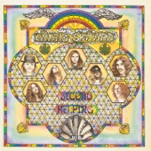 Lynyrd Skynyrd - The Needle and the Spoon