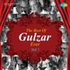 The Best of Gulzar Ever Vol 1 Single