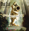Meat Loaf - It's All Coming Back to Me Now (Radio Edit) artwork
