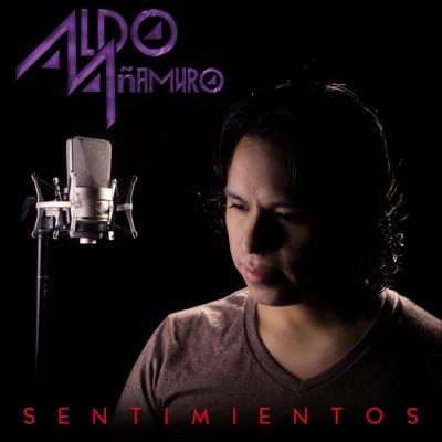 Sentimientos - Single - Aldo Añamuro