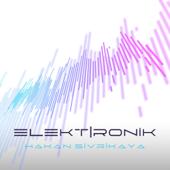 Elektİronik