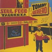 Tommy Guerrero - Terra Unfirma