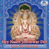 Hey Naath Jineshwar Dev (Jain Devotional)