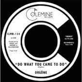 Orgone - Do What You Came to Do