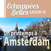 Télécharger Un printemps à Amsterdam Episode 1