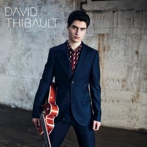 David Thibault - Sous les mots