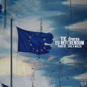 Te Dness - Eu Referendum