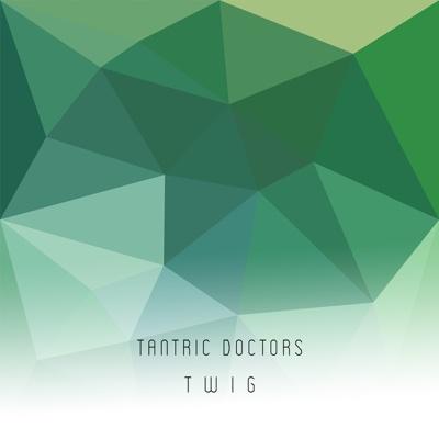 T W I G - Tantric Doctors album
