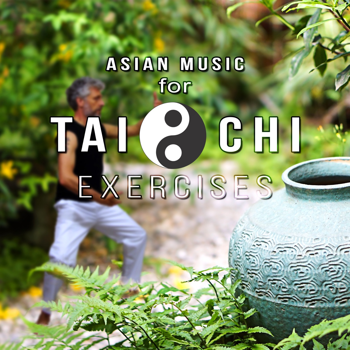 Asian Music for Tai Chi Exercises: Qi Gong, Oriental Sounds for Zen