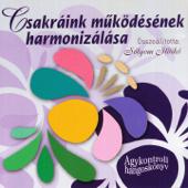 Csakráink Működésének Harmonizálása (feat. Sólyom Ildikó)