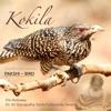 Meditation Tunes Pakshi Bird Kokila