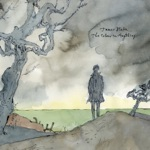 James Blake - I Need a Forest Fire (feat. Bon Iver)