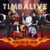 Timbalive - Baila Rumbero (feat. Maykel Fonts) artwork