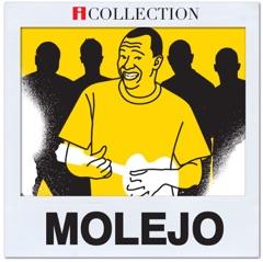 Molejo - iCollection