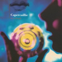 Secret People by Capercaillie on Apple Music