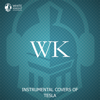 Instrumental Covers of Tesla - White Knight Instrumental