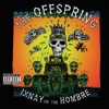 Ixnay on the Hombre, The Offspring
