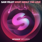 What About the Love - Single
