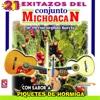21 Exitazos Del Conjunto Michoacán - Conjunto Michoacan