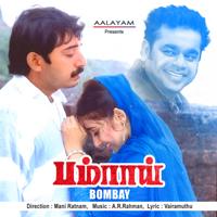 A. R. Rahman & K. S. Chitra - Kannalanae artwork