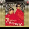 Tera Chehra - Adnan Sami