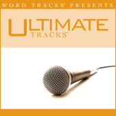 Thank You (As Made Popular By Ray Boltz) [Performance Track]-Ultimate Tracks