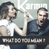 Karmin - What Do You Mean? artwork