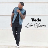 VEDO - So Gone