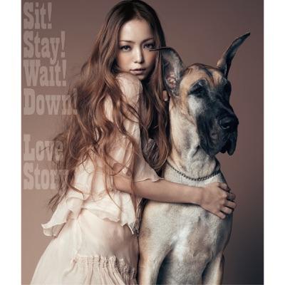 Sit! Stay! Wait! Down!/Love Story - Namie Amuro