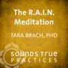Tara Brach PhD - The R.A.I.N. Meditation artwork
