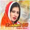 Zakhmi Dil Vol 159