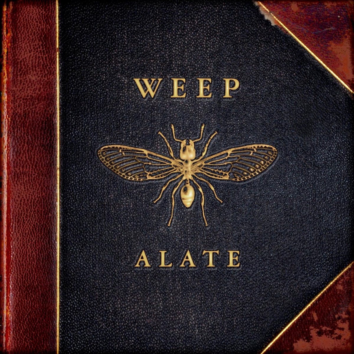 Alate WEEP CD cover
