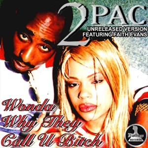 2Pac. Wonder Why They Call U Bitch (feat. Faith Evans) - Single Mp3 Download