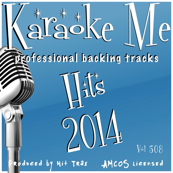 Backing Tracks Hits 2014 Vol 508 (Backing Tracks)