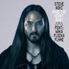 Rage the Night Away (feat. Waka Flocka Flame) by Steve Aoki